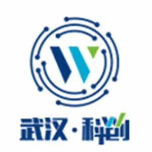 武汉科技成果转化平台