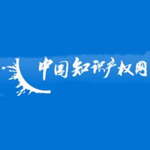 中国知识产权网