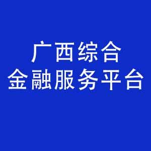 广西综合金融服务平台